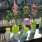 Aia had made a flower installation in the Peepoo sanitary bags, to enhance the byeffect as a fertilizer, to some as important as the toilet